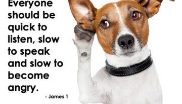 DogListening James1